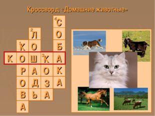 Кроссворд «Домашние животные» 1 2 3 4 К