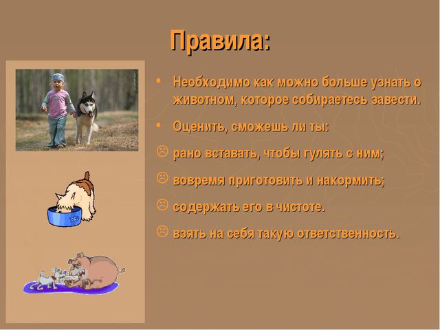 Правила: Необходимо как можно больше узнать о животном, которое собираетесь з...