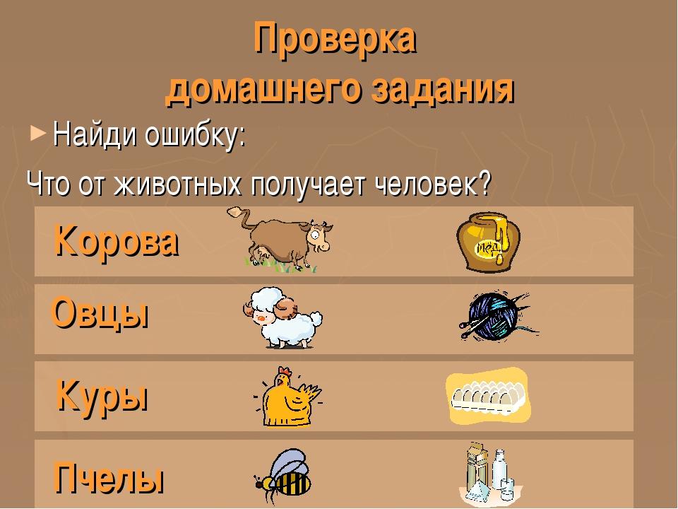 Проверка домашнего задания Найди ошибку: Что от животных получает человек? Ко...