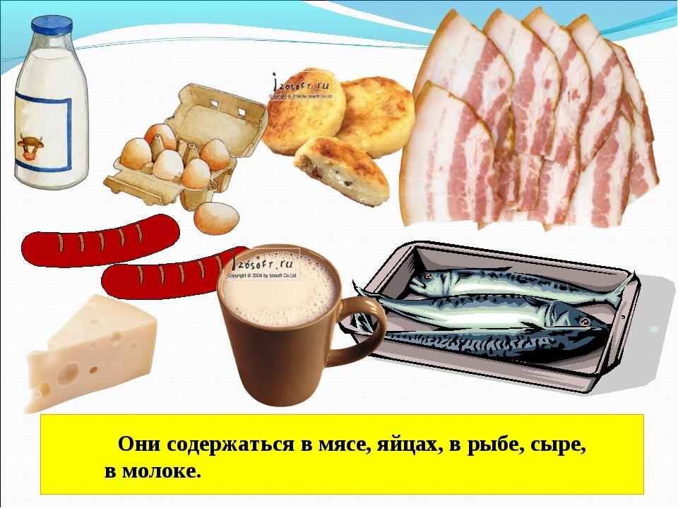 Они содержаться в мясе, яйцах, в рыбе, сыре, в молоке.