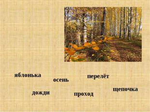 проход дожди яблонька перелёт осень щепочка