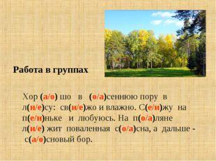 Работа в группах Хор (а/о) шо в (о/а)сеннюю пору в л(и/е)су: св(и/е)жо и влаж