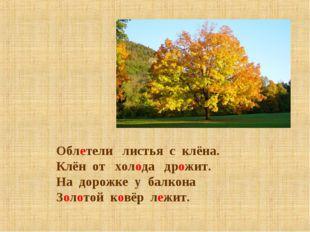 Облетели листья с клёна. Клён от холода дрожит. На дорожке у балкона Золотой
