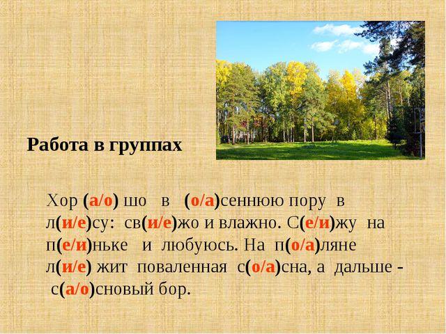 Работа в группах Хор (а/о) шо в (о/а)сеннюю пору в л(и/е)су: св(и/е)жо и влаж...