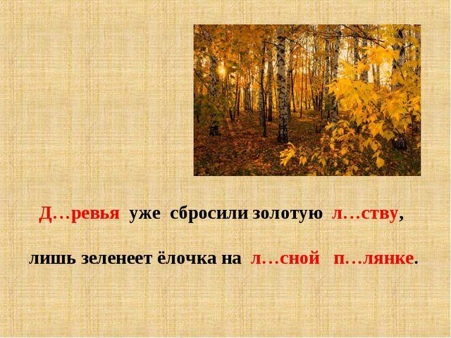 Д…ревья уже сбросили золотую л…ству, лишь зеленеет ёлочка на л…сной п…лянке.