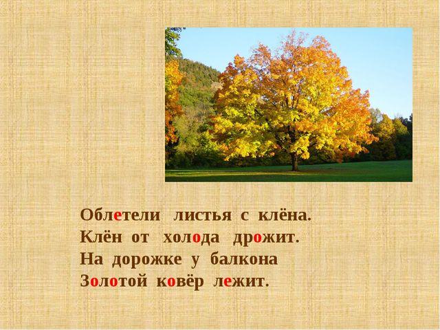 Облетели листья с клёна. Клён от холода дрожит. На дорожке у балкона Золотой...