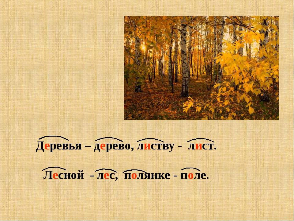 Деревья – дерево, листву - лист. Лесной - лес, полянке - поле.