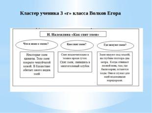 Кластер ученика 3 «г» класса Волков Егора