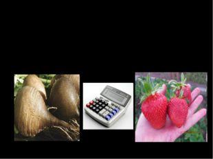 Тема: «Учет затрат и калькулирование выхода продукции растениеводства»