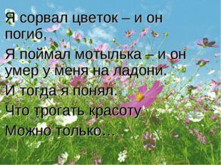 Я сорвал цветок – и он погиб, Я поймал мотылька – и он умер у меня на ладони.
