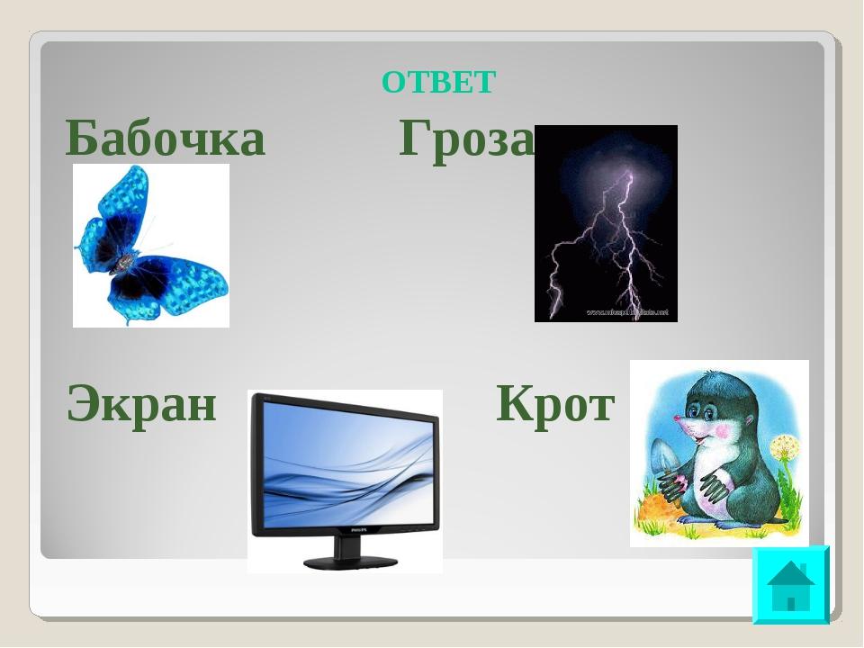 ОТВЕТ Бабочка Гроза Экран Крот