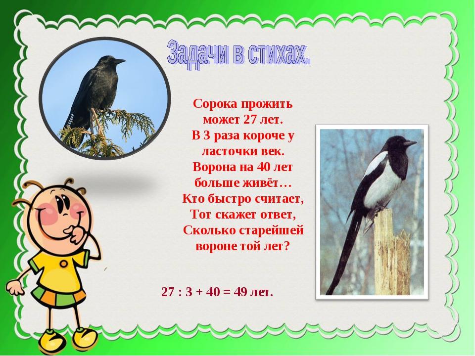 Сорока прожить может 27 лет. В 3 раза короче у ласточки век. Ворона на 40 лет...