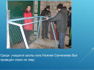 Среди учащихся школы села Нижнее Санчелеево был проведен опрос на тему: