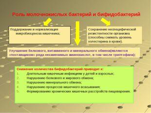 Роль молочнокислых бактерий и бифидобактерий Снижение количества бифидобакте