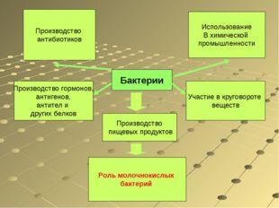 Бактерии Использование В химической промышленности Производство пищевых проду