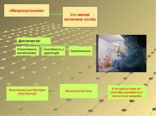 Достигается: Пластичность метаболизма Способность к адаптации Экологичность М