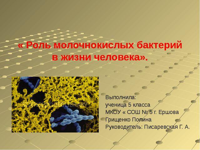 « Роль молочнокислых бактерий в жизни человека». Выполнила: ученица 5 класса...
