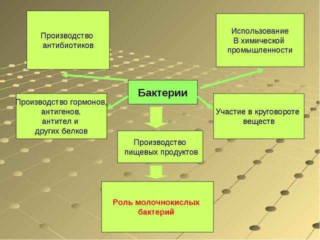 Бактерии Использование В химической промышленности Производство пищевых проду...