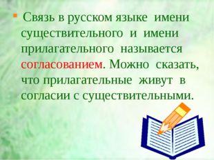 Связь в русском языке  имени существительного  и  имени  прилагательного  наз