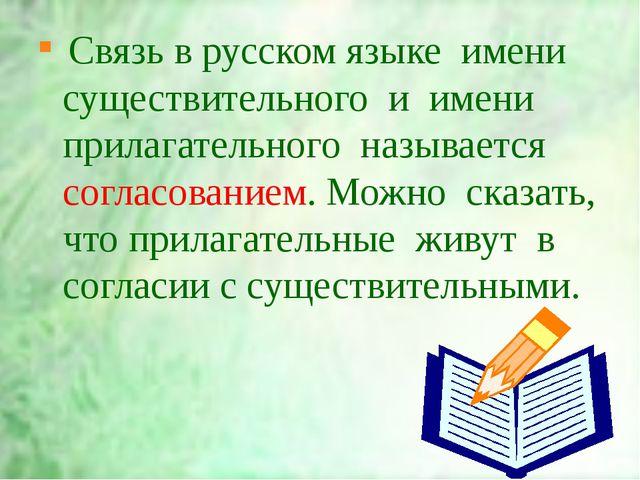 Связь в русском языке  имени существительного  и  имени  прилагательного  наз...