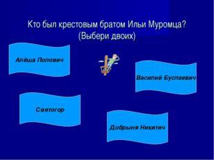 Кто был крестовым братом Ильи Муромца? (Выбери двоих) Алёша Попович Святогор