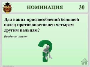Введите ответ Для каких приспособлений большой палец противопоставлен четырем