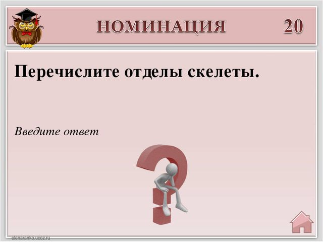 Введите ответ Перечислите отделы скелеты.