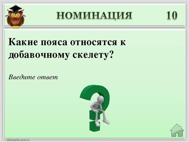 Введите ответ Какие пояса относятся к добавочному скелету?