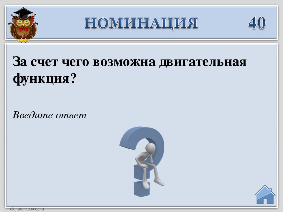 Введите ответ За счет чего возможна двигательная функция?
