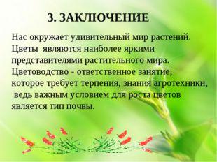 3. ЗАКЛЮЧЕНИЕ Нас окружает удивительный мир растений. Цветы являются наиболе