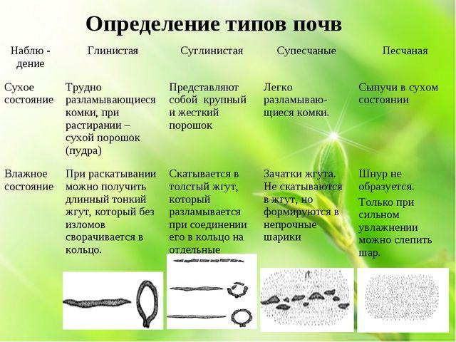 Определение типов почв Наблю - дениеГлинистая СуглинистаяСупесчаныеПесчан...