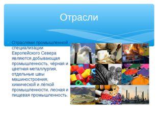 Отраслями промышленной специализации Европейского Севера являются добывающая
