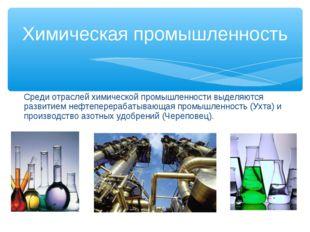 Среди отраслей химической промышленности выделяются развитием нефтеперерабаты