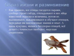 Как правило, все птицы гнездятся парами, сообща строят гнёзда, откладывают в