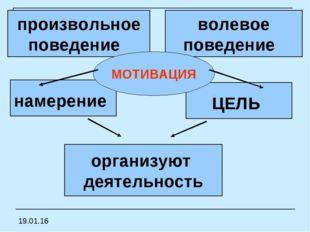 намерение ЦЕЛЬ организуют деятельность произвольное поведение волевое поведе
