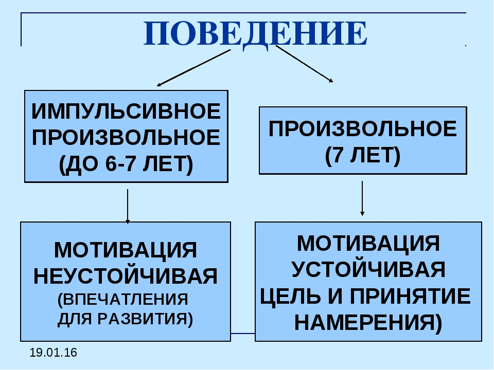 ПОВЕДЕНИЕ ИМПУЛЬСИВНОЕ ПРОИЗВОЛЬНОЕ (ДО 6-7 ЛЕТ) ПРОИЗВОЛЬНОЕ (7 ЛЕТ) МОТИВАЦ...
