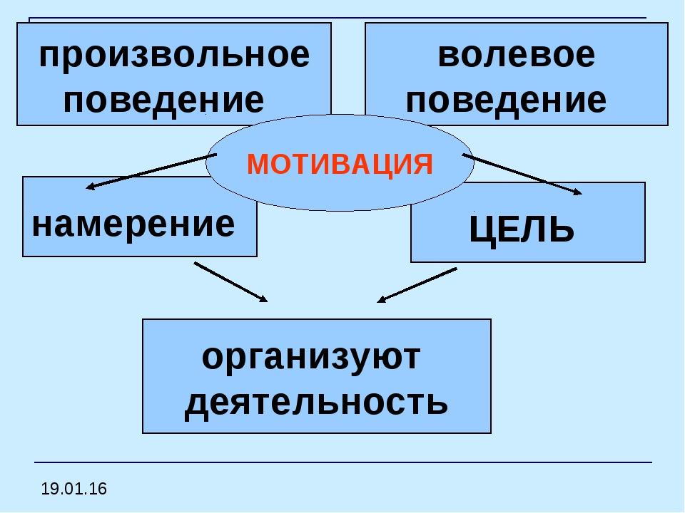 намерение ЦЕЛЬ организуют деятельность произвольное поведение волевое поведе...