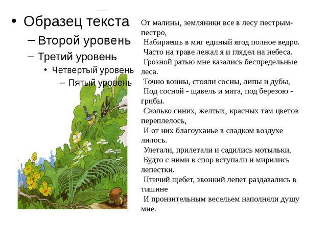 От малины, земляники все в лесу пестрым-пестро, Набираешь в миг единый ягод...