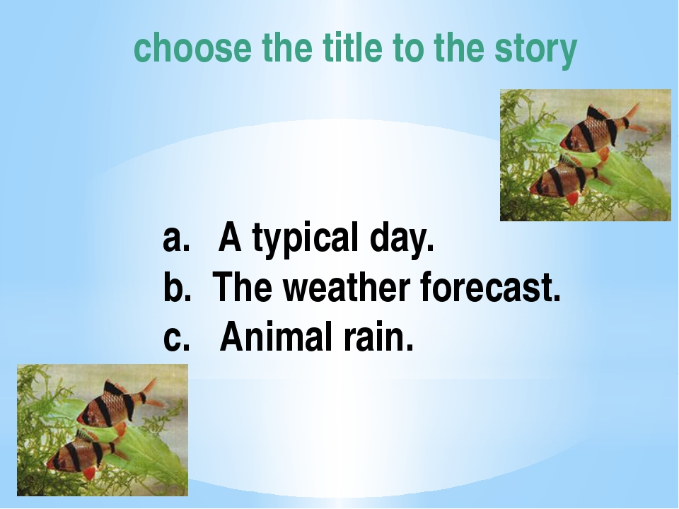 choose the title to the story A typical day. b. The weather forecast. c. Anim...