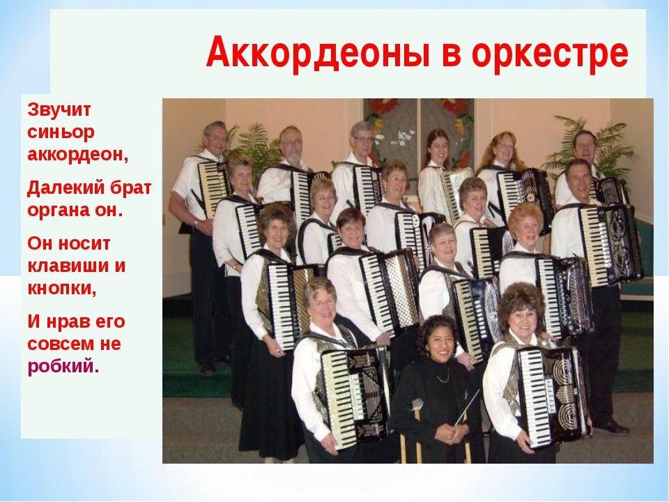 Аккордеоны в оркестре