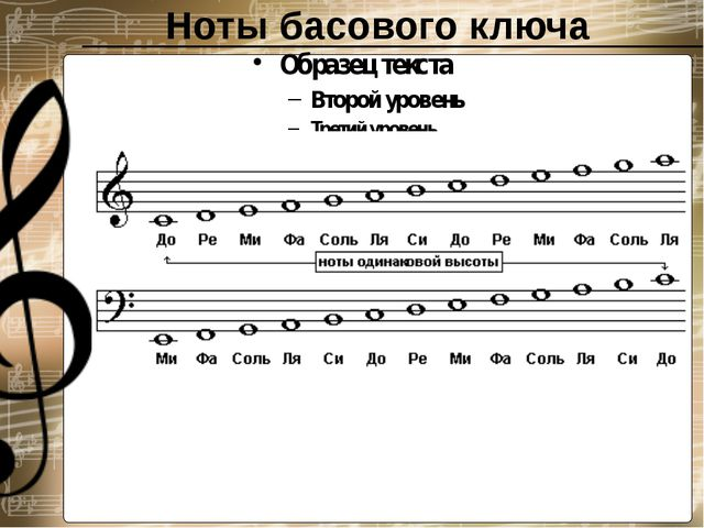 Ноты басового ключа