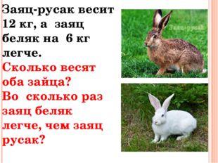 Заяц-русак весит 12 кг, а заяц беляк на 6 кг легче. Сколько весят оба зайца?