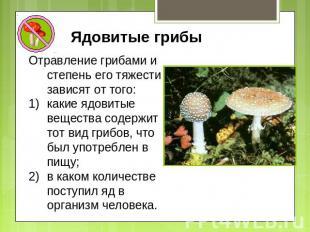 Ядовитые грибы Отравление грибами и степень его тяжести зависят от того: какие я