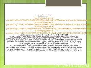 Картинки грибов: http://images.yandex.ru/yandsearch?text=%D0%B3%D1%80%D0%B8%D0%B