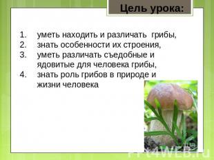 Цель урока: уметь находить и различать грибы, знать особенности их строения, уме