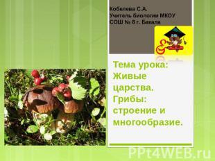 Кобелева С.А. Учитель биологии МКОУ СОШ № 8 г. Бакала