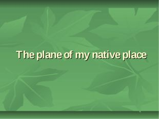 The plane of my native place