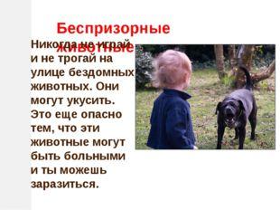 Беспризорные животные Никогда не играй и не трогай на улице бездомных животны