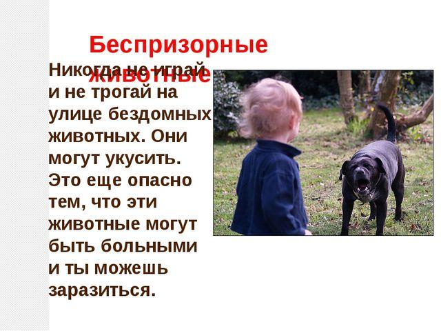 Беспризорные животные Никогда не играй и не трогай на улице бездомных животны...