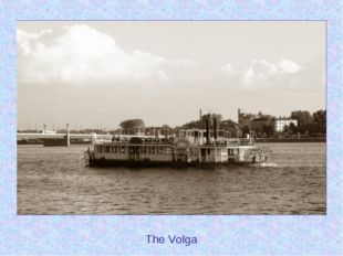 The Volga